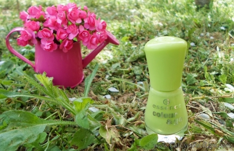 essence colour and go nail polish review